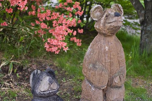 見守る熊たち